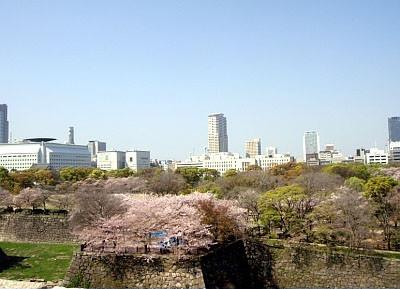 엄마와 함께한 오사카 벚꽃나들이