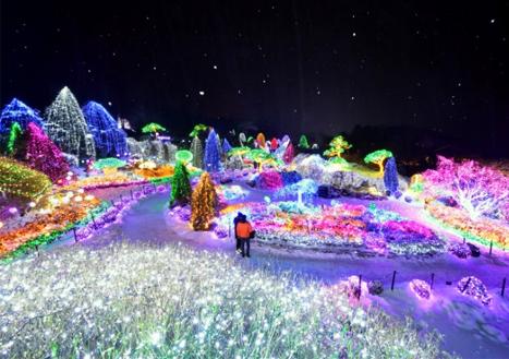 [국내] 겨울밤 펼쳐지는 오색빛의 향연