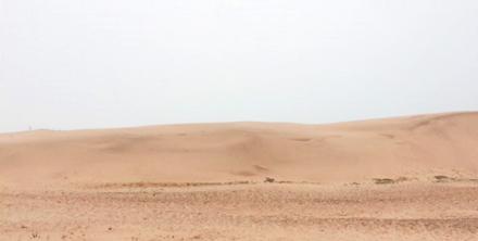 한국에서 만나는 사막, 신두리 해안사구
