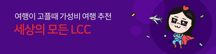 해외항공_LCC_12543