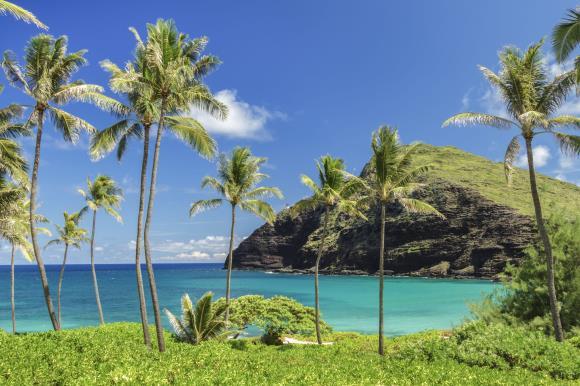 [그린여행]하와이 7일_와이키키 리조트(일급호텔)_반자유 패키지