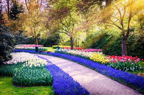 [네덜란드/벨기에/프랑스 10일] 봄의 시작