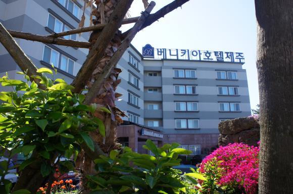 [아시아나/관광지3종무료] 베니키아호텔 제주 에어카텔 3일